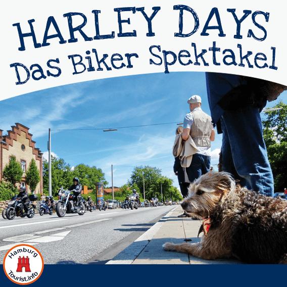 Harley Days   Veranstaltungen   HTI