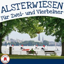 Alsterwiesen