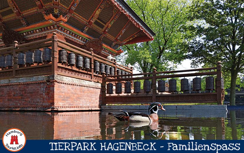 Hagenbeck_1