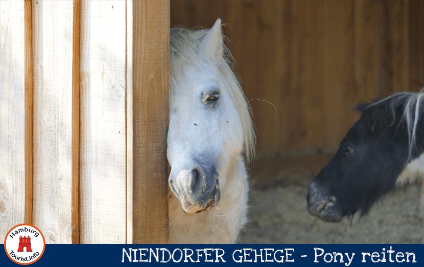 niendorfer_gehege_1